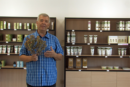 Aladanie - mimořádná bylina Kréty